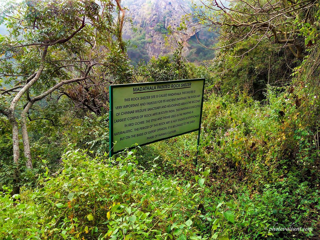 Chinnar Wildlife Sanctuary Trekking and Butterfly Watching