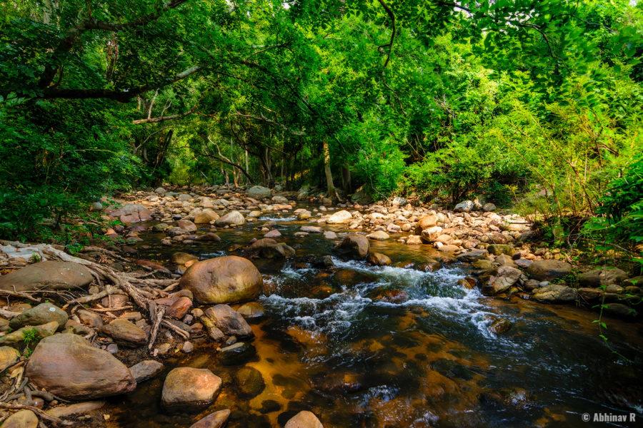 Chinnar riverside trekking