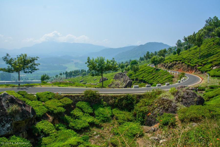 Gap-Road-Munnar-5989